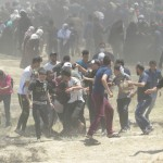 Weekly Report On Israeli Human Rights Violations in the Occupied Palestinian Territory (10 – 16 May 2018)