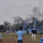 Weekly Report On Israeli Human Rights Violations in the Occupied Palestinian Territory (07 – 12 June 2018)