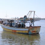 Following PCHR's intervention, Israeli authorities Release Fishing Boat in Gaza Strip