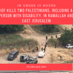 In Under 15 Hours IOF Kills Two Palestinians, Including a Person with Disability, in Ramallah and East Jerusalem