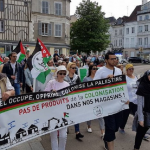 European Court of Human Rights deals major blow to Israel's war on Palestine solidarity