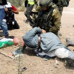Weekly Report on Israeli Human Rights Violations in the Occupied Palestinian Territory (27 August – 02 September 2020)